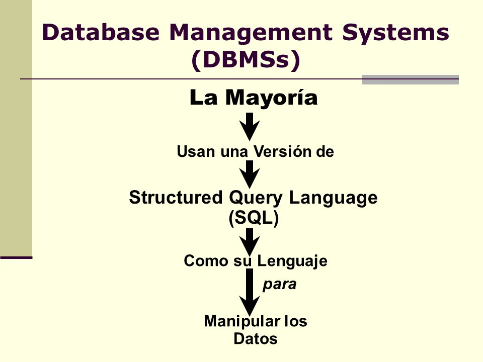 Database Management Systems (DBMSs)