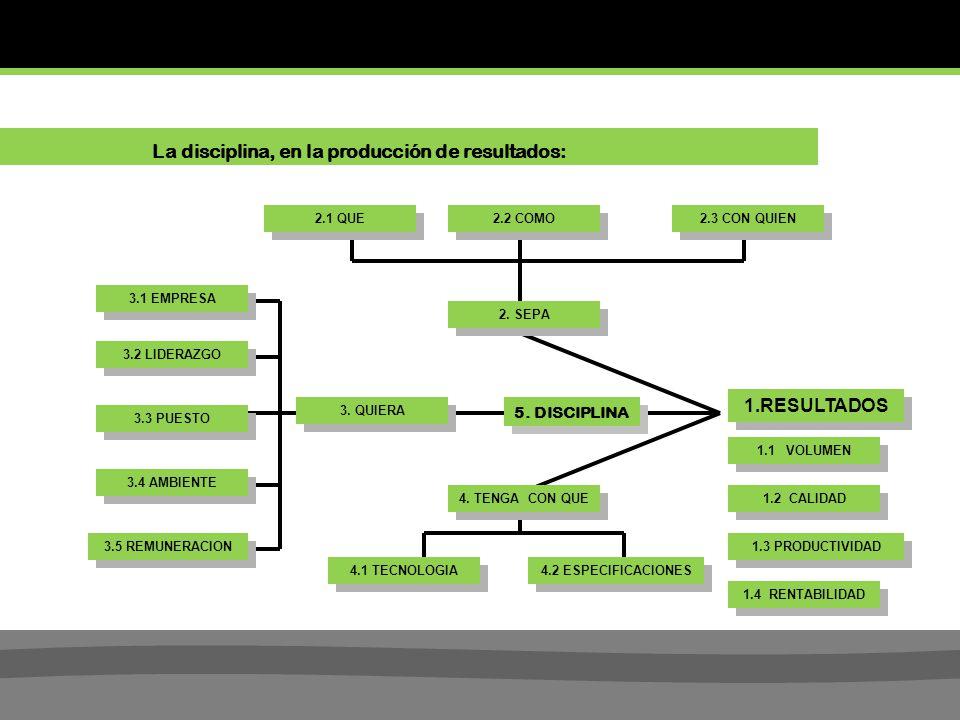 La disciplina, en la producción de resultados:
