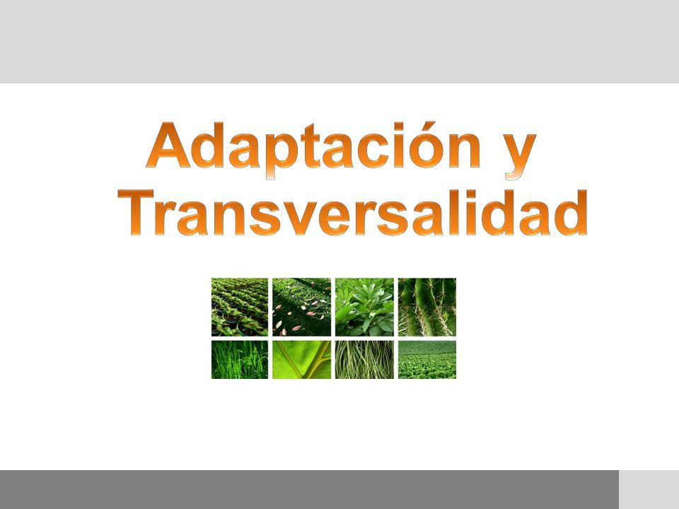 Adaptación y Transversalidad