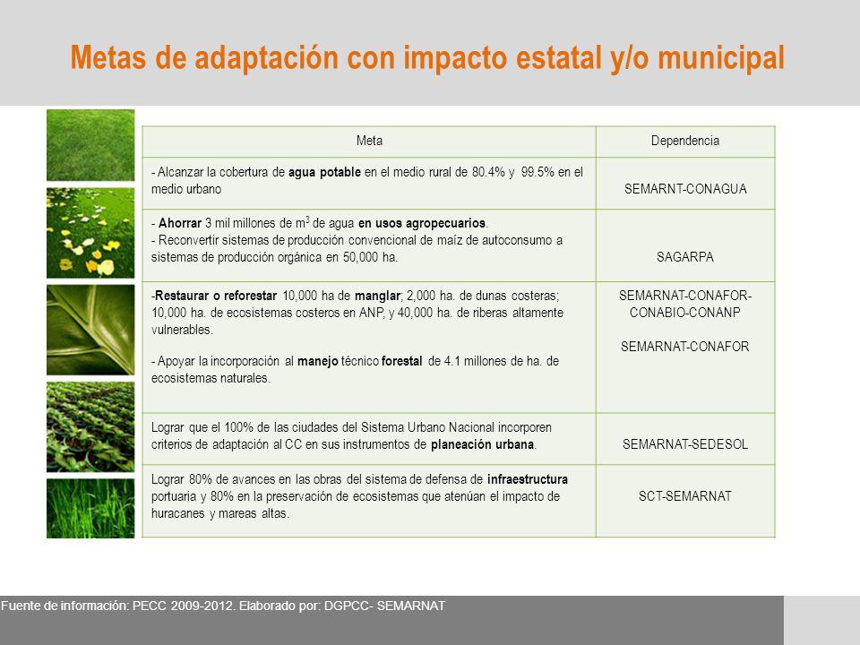 Metas de adaptación con impacto estatal y/o municipal