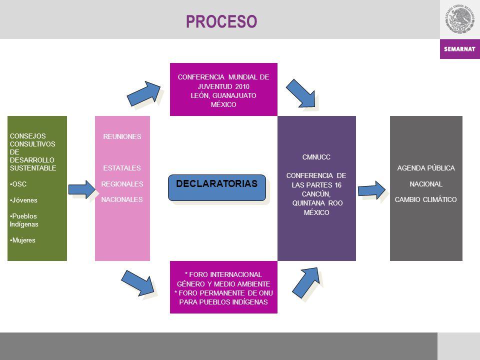 PROCESO DECLARATORIAS CONFERENCIA MUNDIAL DE JUVENTUD 2010