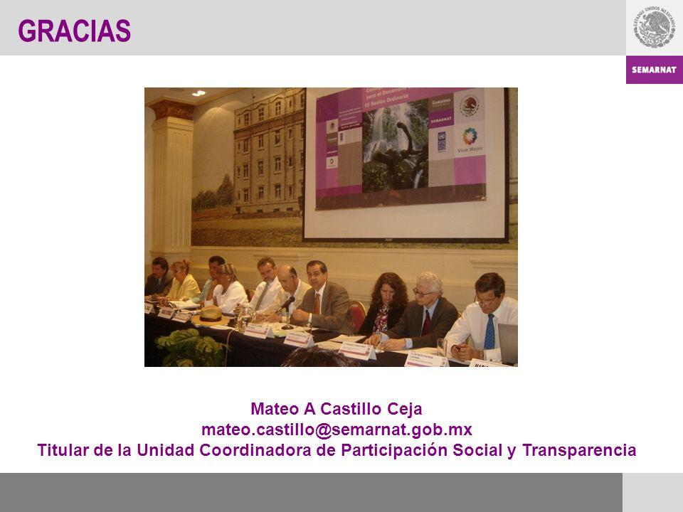 GRACIAS Mateo A Castillo Ceja mateo.castillo@semarnat.gob.mx