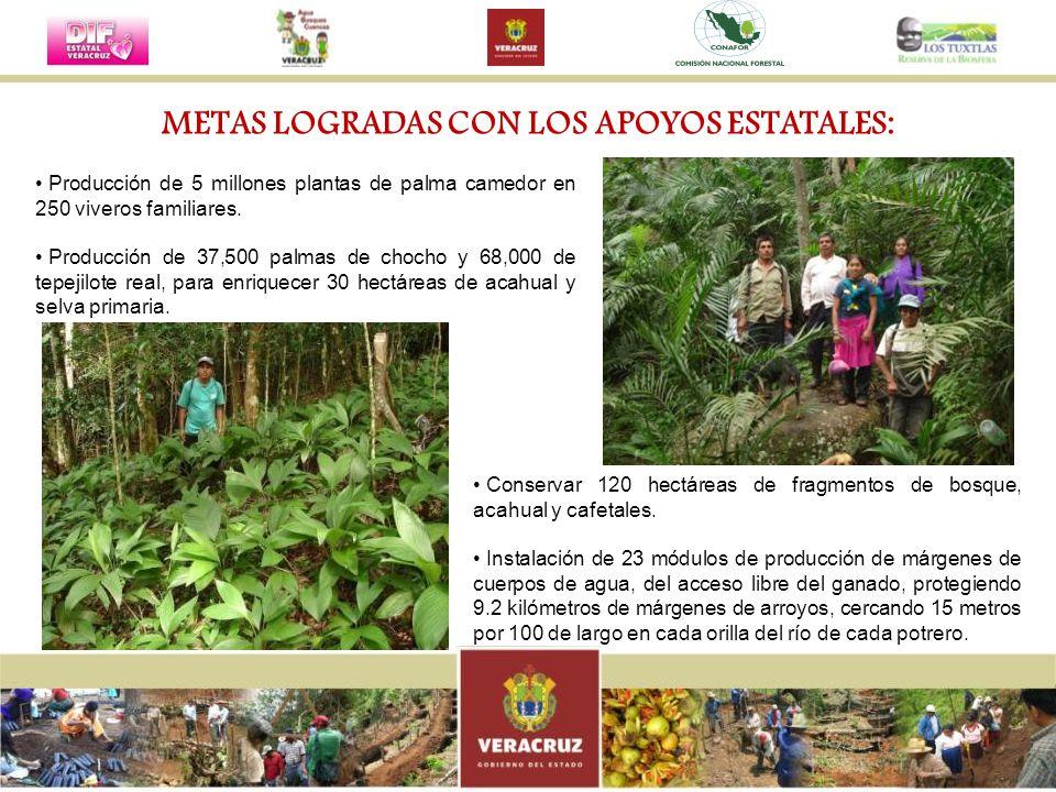 METAS LOGRADAS CON LOS APOYOS ESTATALES: