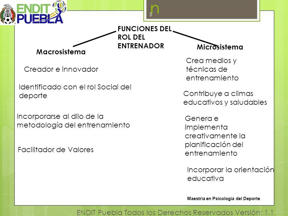 Investigaciónn FUNCIONES DEL ROL DEL ENTRENADOR Microsistema