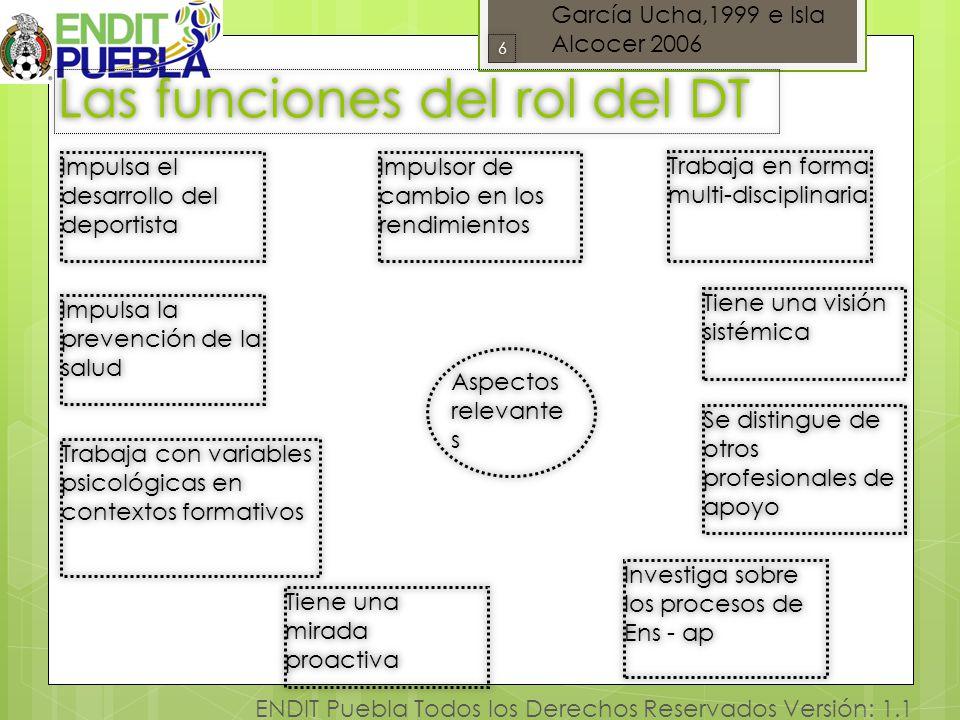 Las funciones del rol del DT