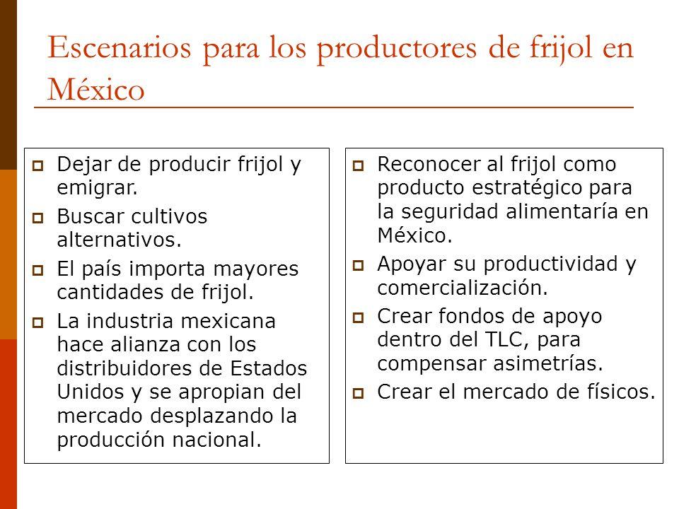 Escenarios para los productores de frijol en México