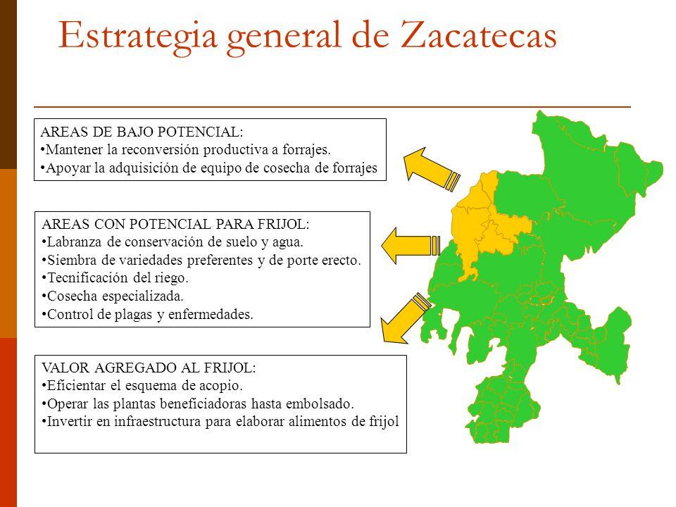 Estrategia general de Zacatecas
