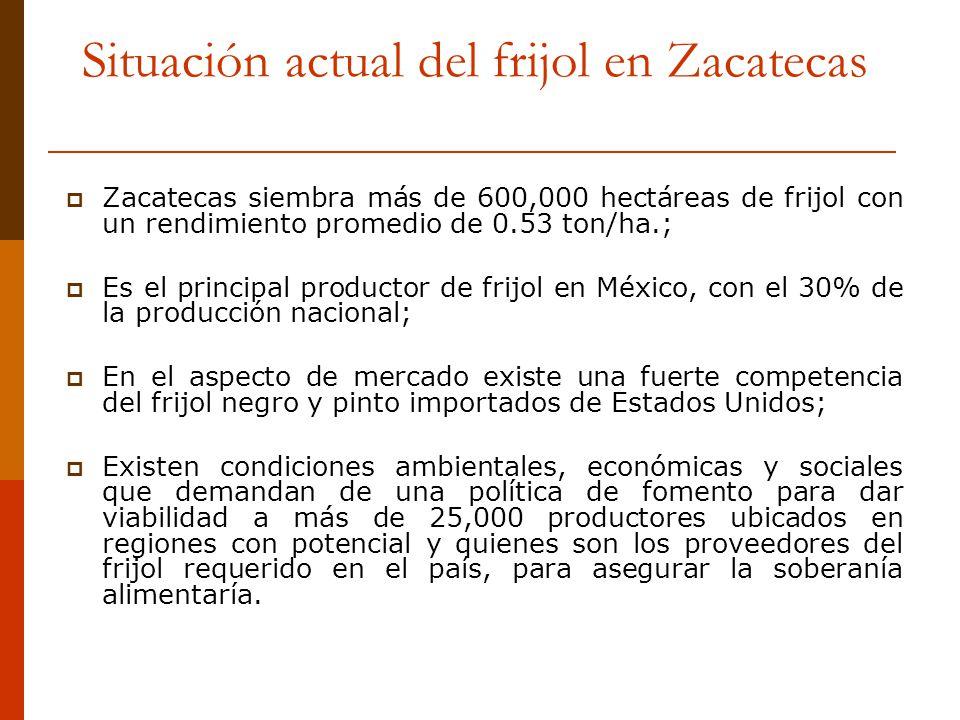 Situación actual del frijol en Zacatecas