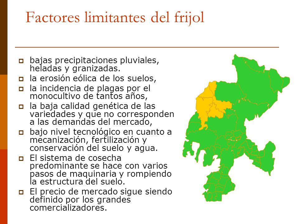 Factores limitantes del frijol