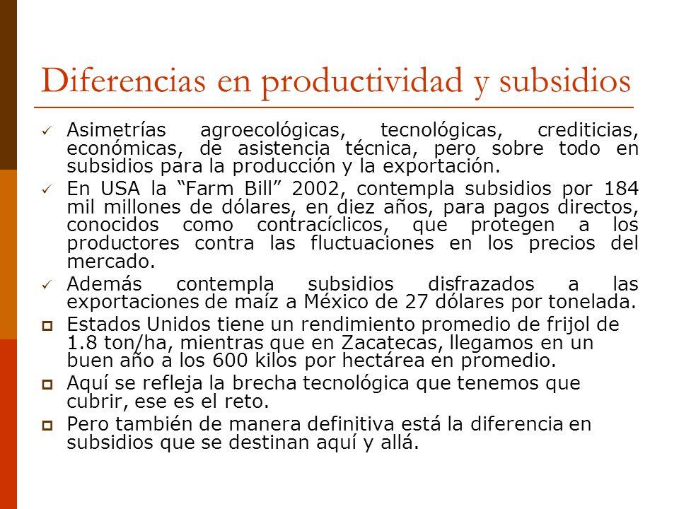 Diferencias en productividad y subsidios