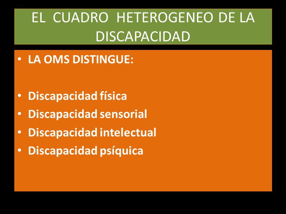 EL CUADRO HETEROGENEO DE LA DISCAPACIDAD