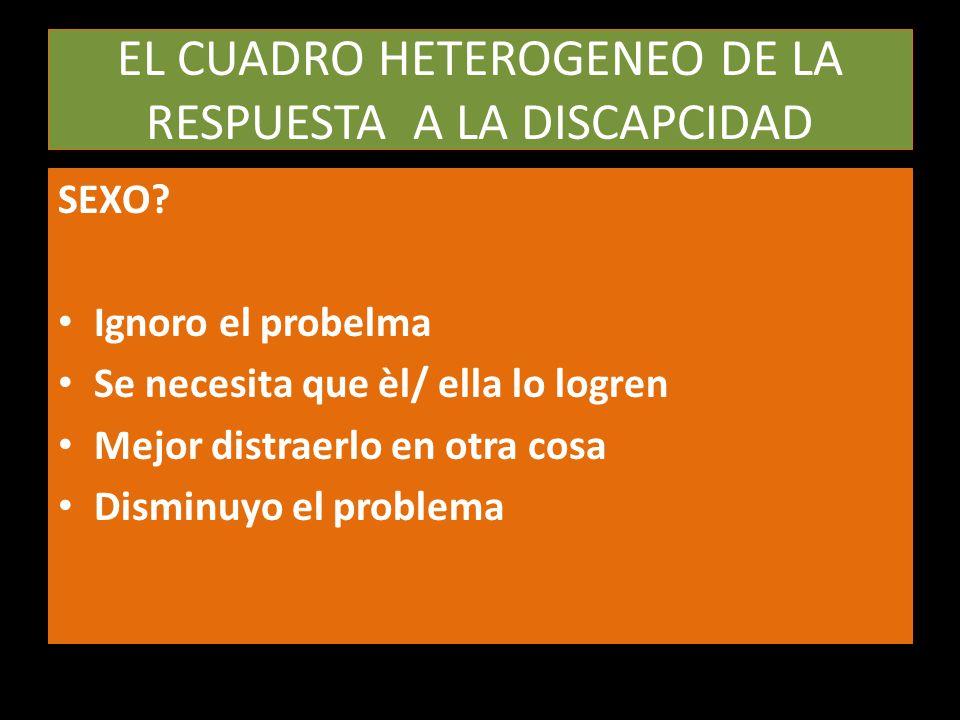 EL CUADRO HETEROGENEO DE LA RESPUESTA A LA DISCAPCIDAD