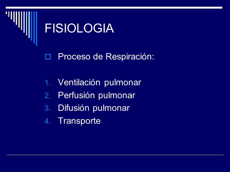FISIOLOGIA Proceso de Respiración: Ventilación pulmonar