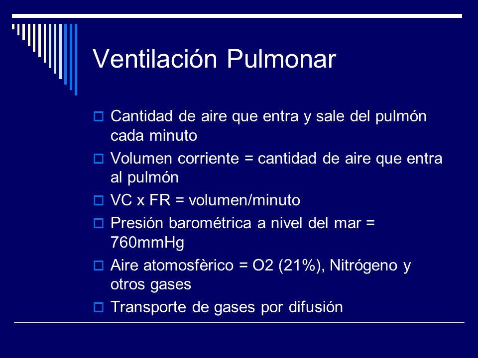 Ventilación Pulmonar Cantidad de aire que entra y sale del pulmón cada minuto. Volumen corriente = cantidad de aire que entra al pulmón.