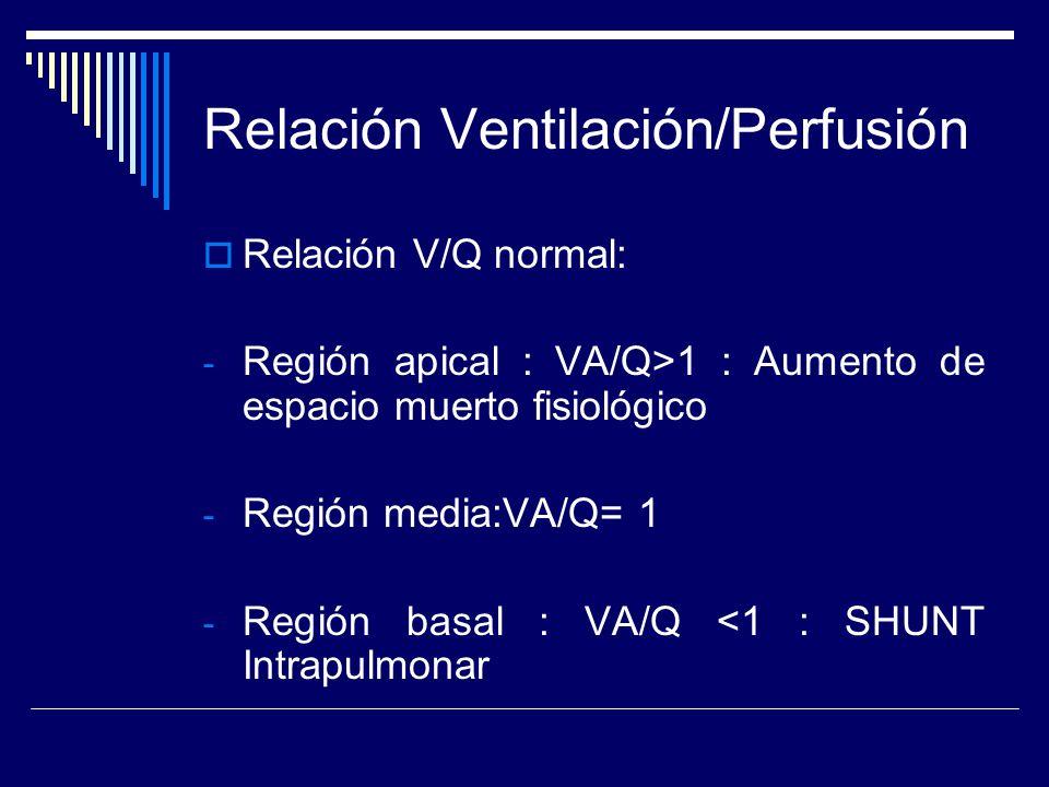 Relación Ventilación/Perfusión