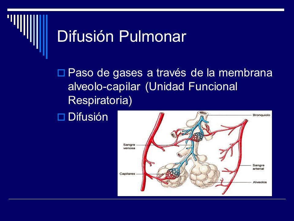 Difusión Pulmonar Paso de gases a través de la membrana alveolo-capilar (Unidad Funcional Respiratoria)