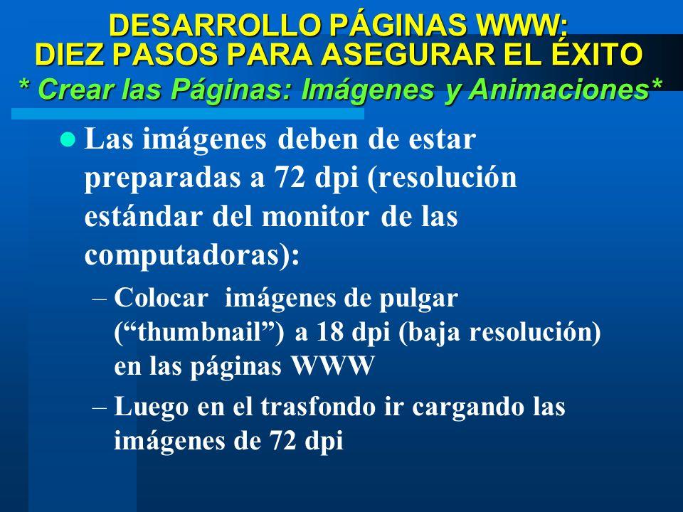 DESARROLLO PÁGINAS WWW: DIEZ PASOS PARA ASEGURAR EL ÉXITO