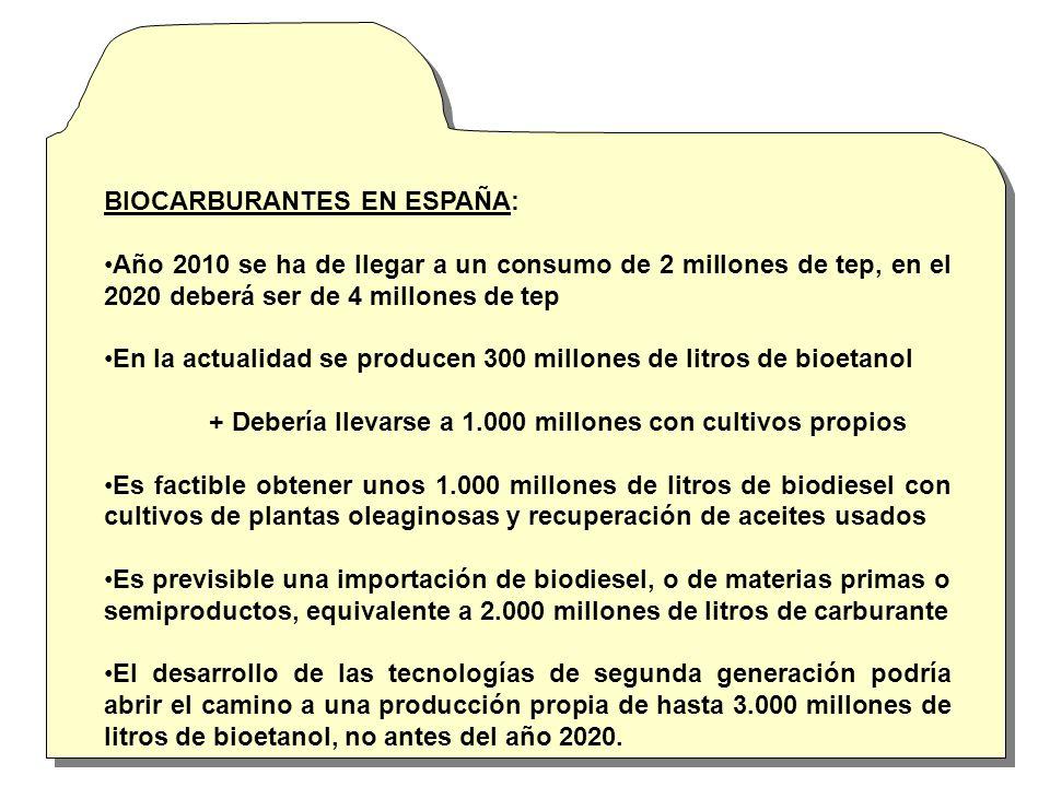BIOCARBURANTES EN ESPAÑA: