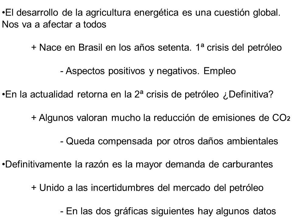 El desarrollo de la agricultura energética es una cuestión global.