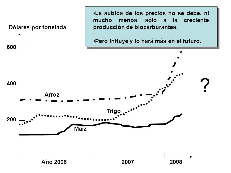 La subida de los precios no se debe, ni mucho menos, sólo a la creciente producción de biocarburantes.