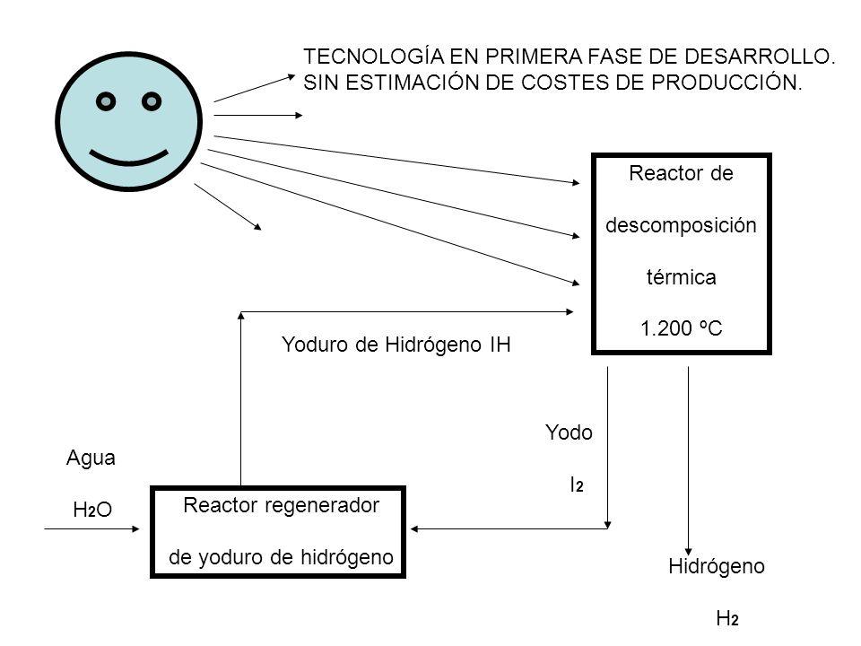 TECNOLOGÍA EN PRIMERA FASE DE DESARROLLO.