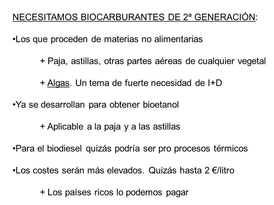 NECESITAMOS BIOCARBURANTES DE 2ª GENERACIÓN:
