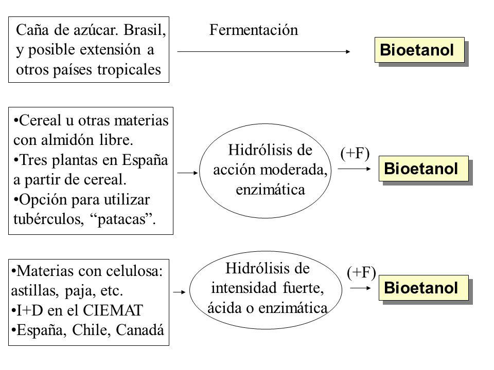 Caña de azúcar. Brasil, y posible extensión a. otros países tropicales. Fermentación. Bioetanol.