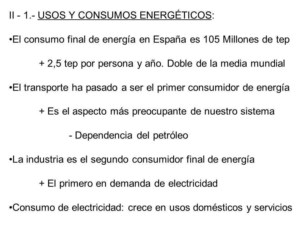 II - 1.- USOS Y CONSUMOS ENERGÉTICOS: