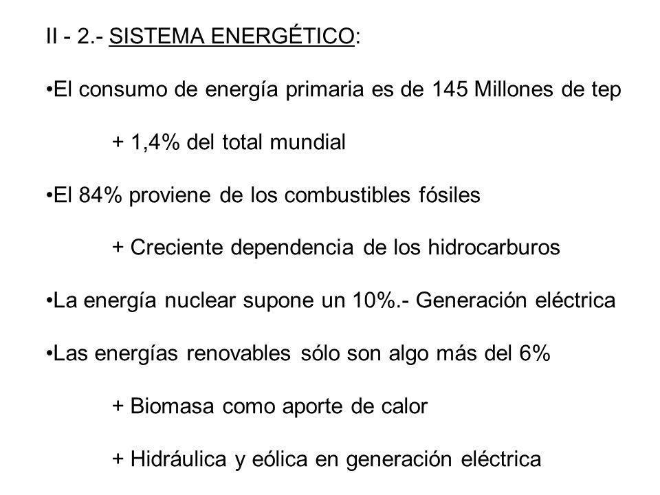 II - 2.- SISTEMA ENERGÉTICO: