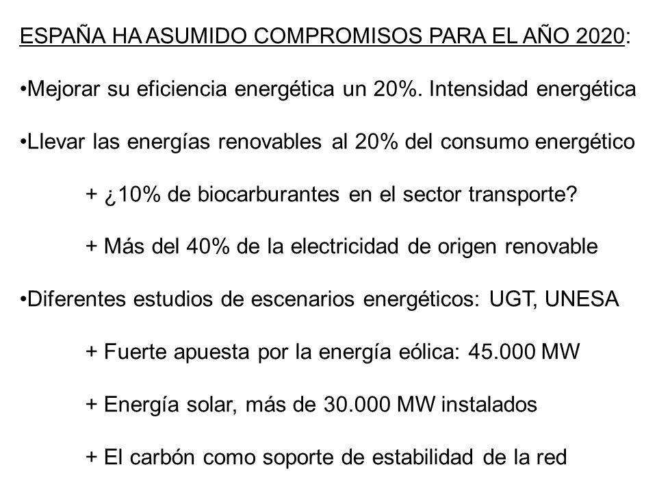 ESPAÑA HA ASUMIDO COMPROMISOS PARA EL AÑO 2020: