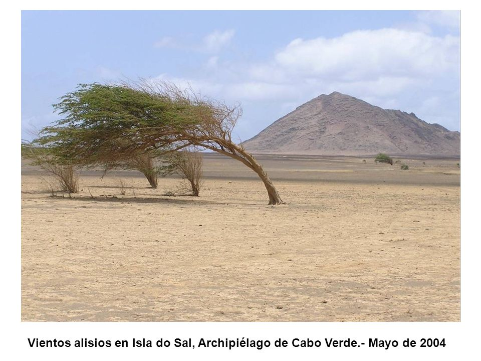 Vientos alisios en Isla do Sal, Archipiélago de Cabo Verde