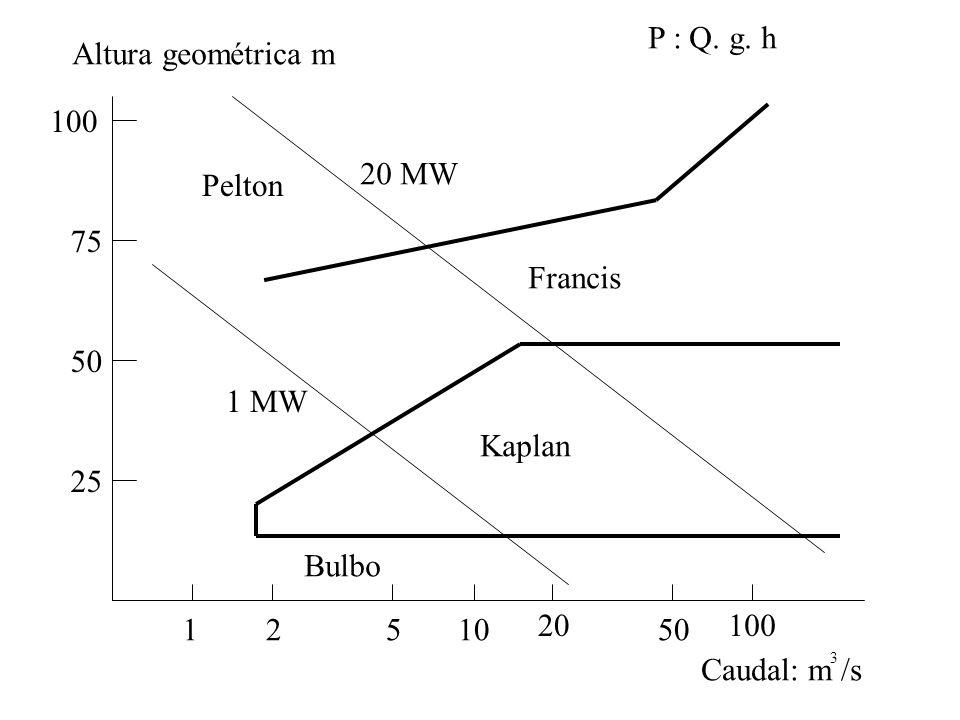 P : Q. g. h Altura geométrica m 100 20 MW Pelton 75 Francis 50 1 MW