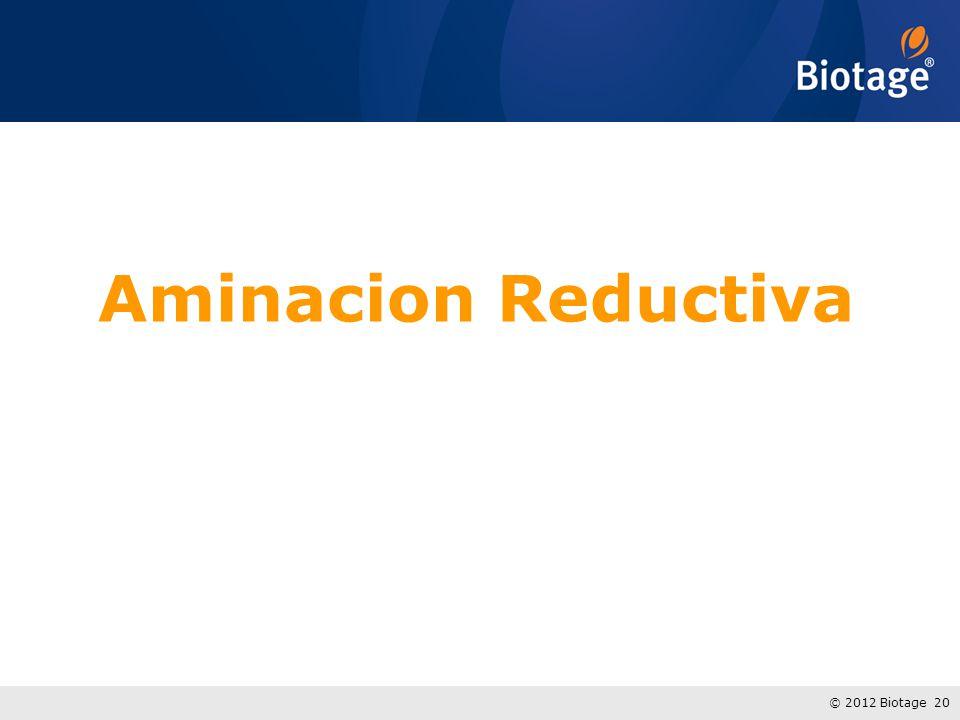 Aminacion Reductiva