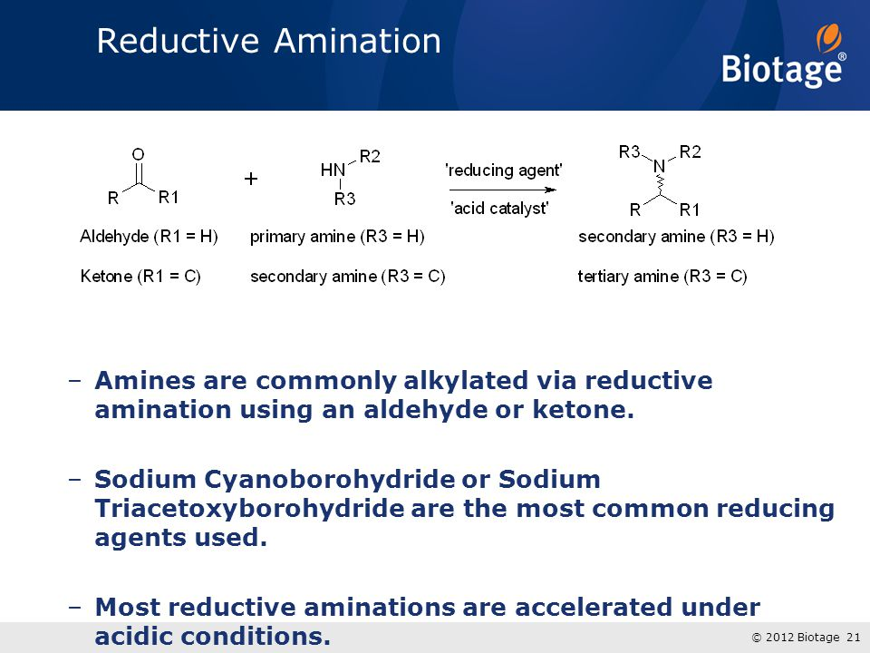 Reductive Amination Amines are commonly alkylated via reductive amination using an aldehyde or ketone.