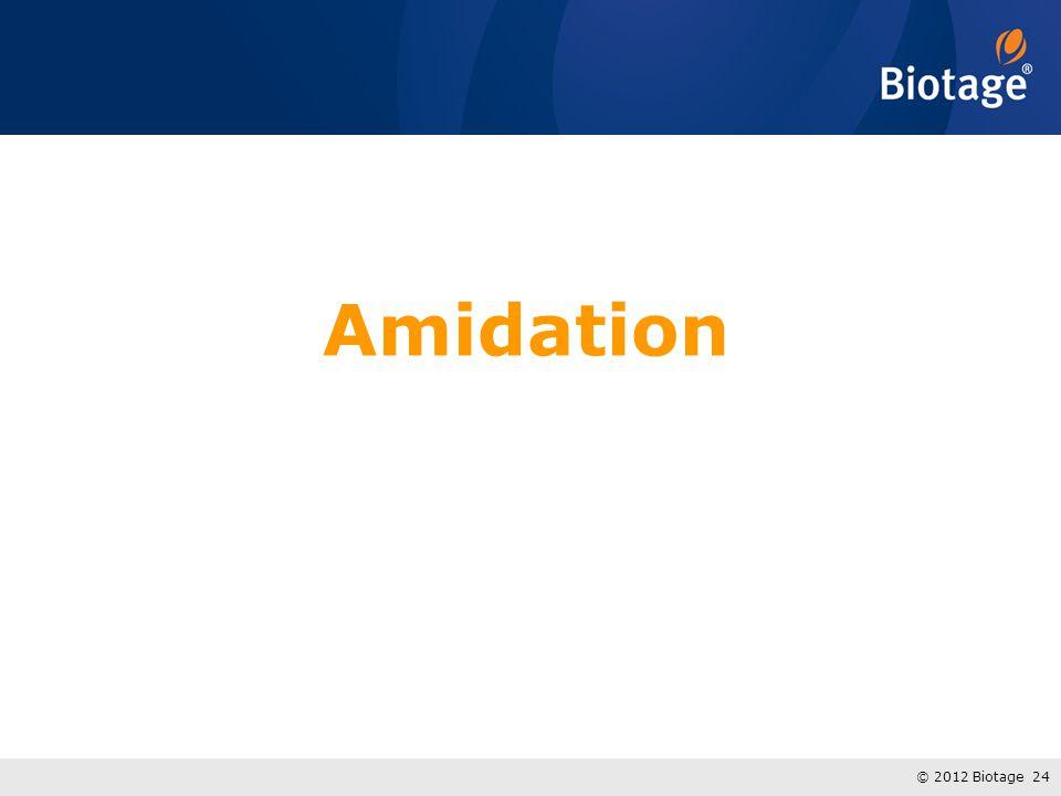 Amidation