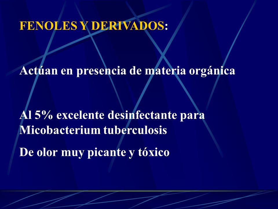 FENOLES Y DERIVADOS: Actúan en presencia de materia orgánica. Al 5% excelente desinfectante para Micobacterium tuberculosis.