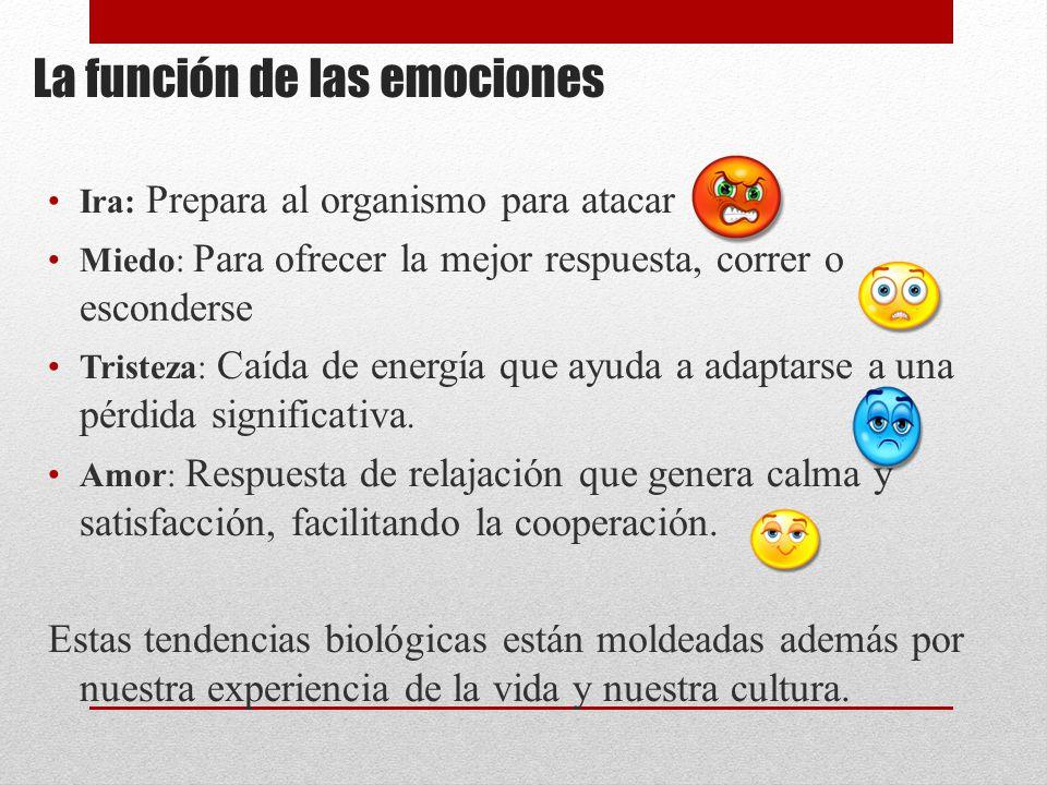 La función de las emociones