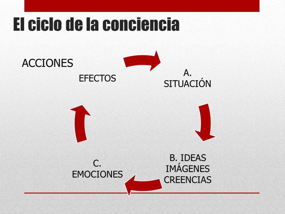 El ciclo de la conciencia
