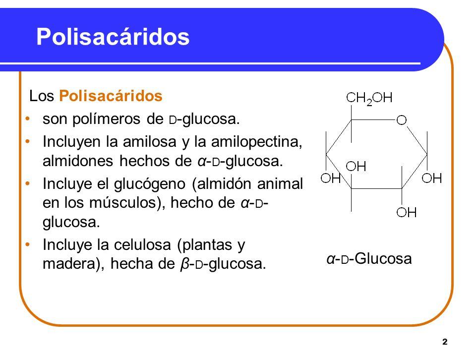 Polisacáridos Los Polisacáridos son polímeros de D-glucosa.