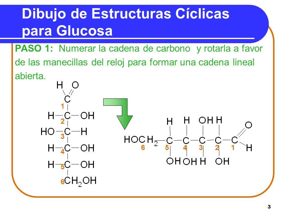 Dibujo de Estructuras Cíclicas para Glucosa