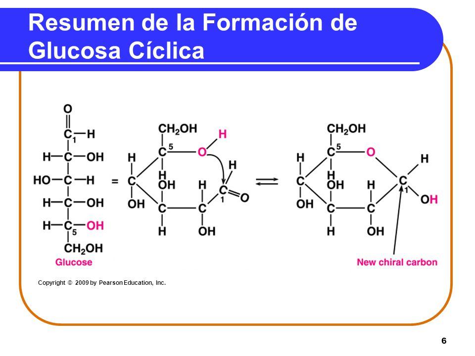 Resumen de la Formación de Glucosa Cíclica