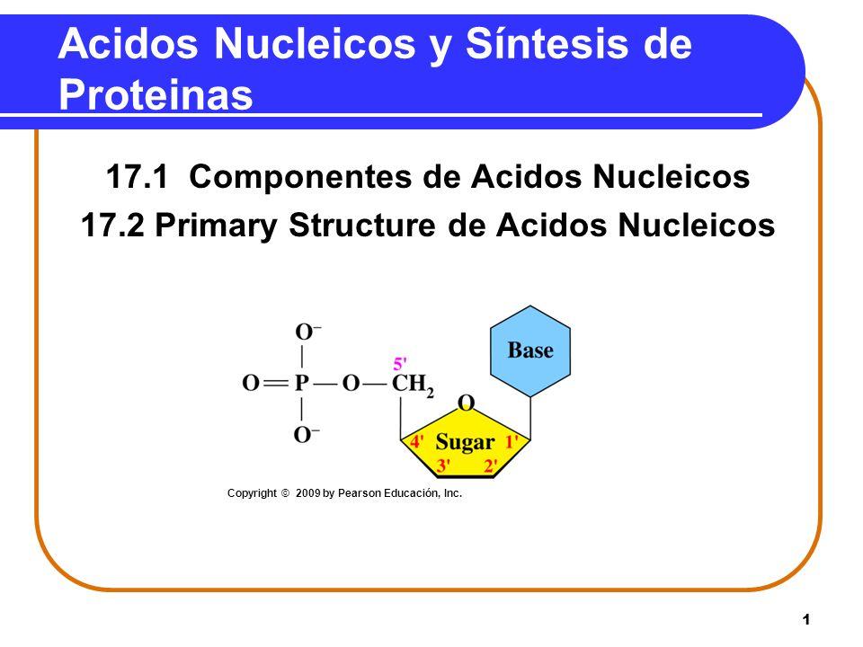 Acidos Nucleicos y Síntesis de Proteinas