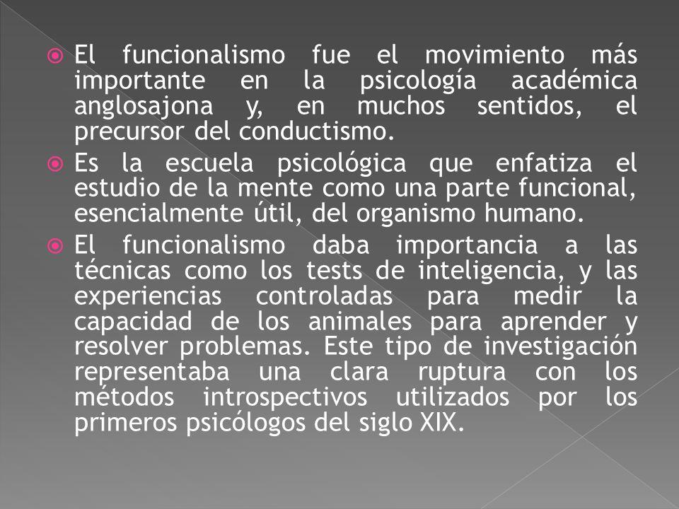 El funcionalismo fue el movimiento más importante en la psicología académica anglosajona y, en muchos sentidos, el precursor del conductismo.