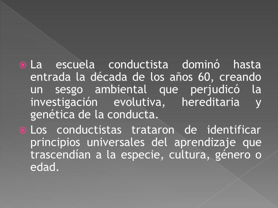 La escuela conductista dominó hasta entrada la década de los años 60, creando un sesgo ambiental que perjudicó la investigación evolutiva, hereditaria y genética de la conducta.