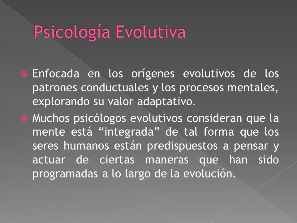 Psicología Evolutiva Enfocada en los orígenes evolutivos de los patrones conductuales y los procesos mentales, explorando su valor adaptativo.