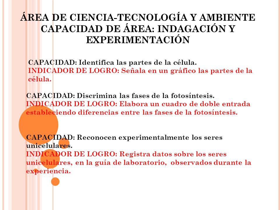 CAPACIDAD DE ÁREA: INDAGACIÓN Y EXPERIMENTACIÓN