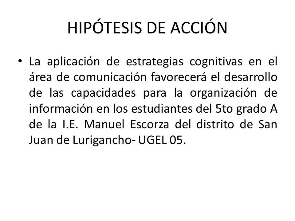 HIPÓTESIS DE ACCIÓN