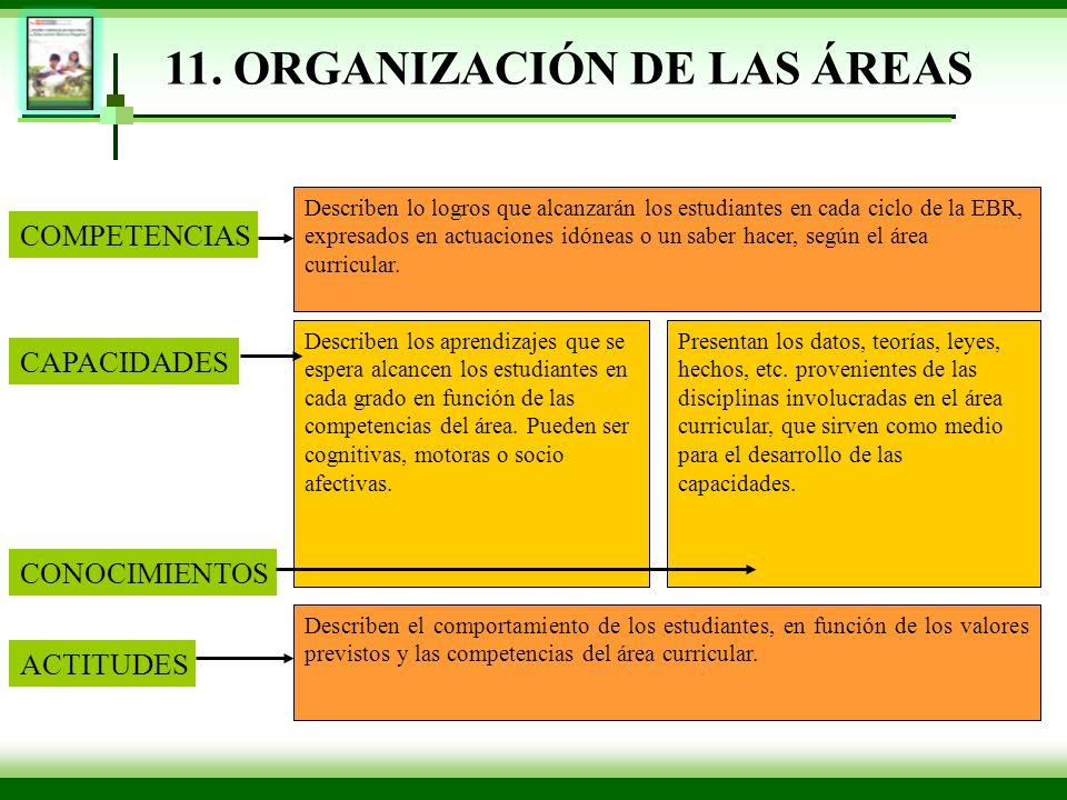 11. ORGANIZACIÓN DE LAS ÁREAS