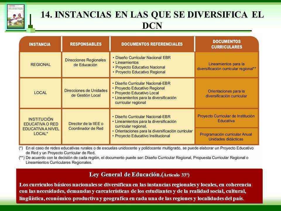 14. INSTANCIAS EN LAS QUE SE DIVERSIFICA EL DCN