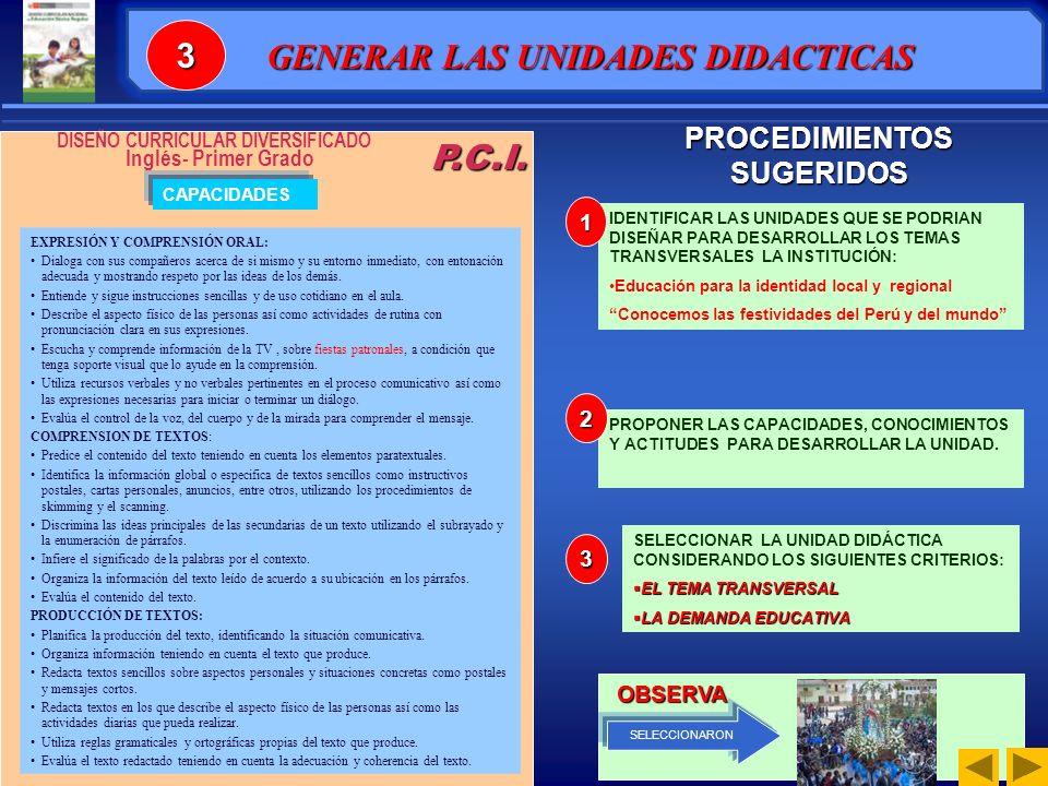 PROCEDIMIENTOS SUGERIDOS DISEÑO CURRICULAR DIVERSIFICADO